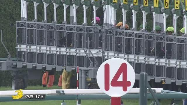 ファルコンS レース映像