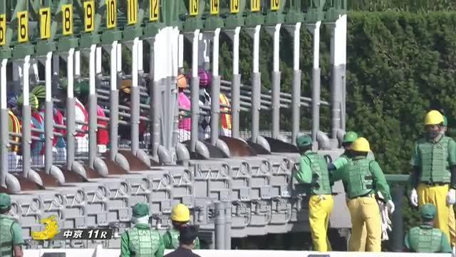 葵ステークス レース映像