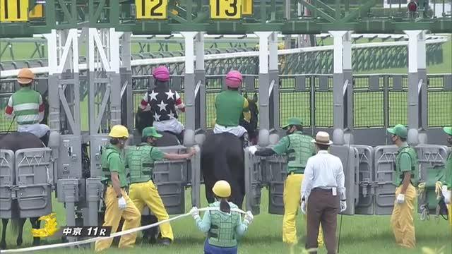 鳴尾記念 レース映像