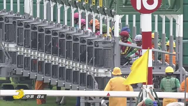 阪神ジャンプS レース映像