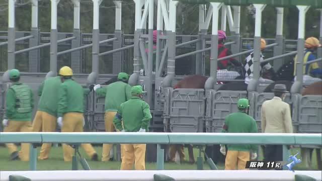 チューリップ賞 レース映像