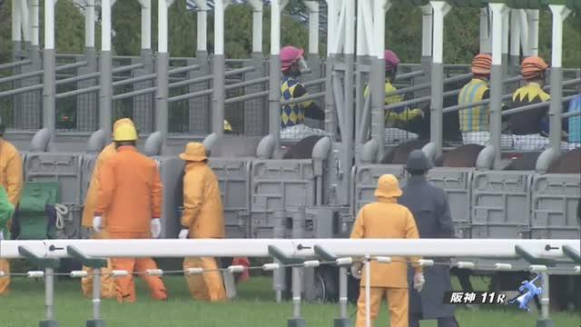 阪神大賞典 レース映像