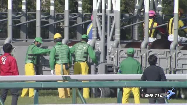 阪神牝馬S レース映像