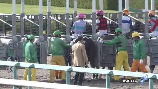 アンタレスS レース映像