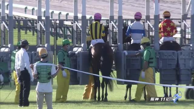 京都大賞典 レース映像