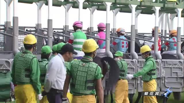菊花賞 レース映像