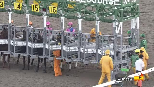 プロキオンS レース映像