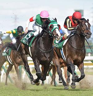 阪神開催初日を飾る伝統の重賞<br/>メールドグラース×レーンに注目