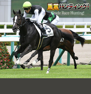 阪神JFの有力馬を分析!<br/>金曜日の雨の影響は!?